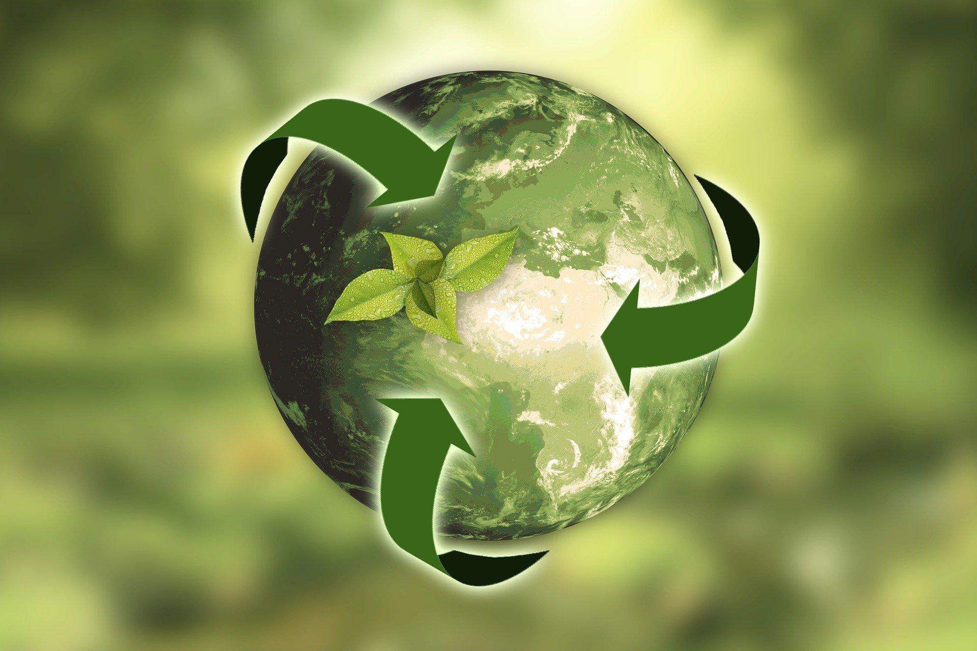 Entreprise de nettoyage écologique à Paris et RSE_ LG Clean